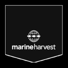 Marin harvest